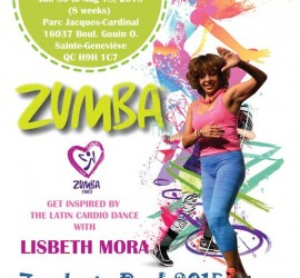 zumba summer outdoor 2015 poster 11x17 inch new_s